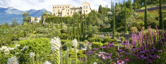 Gardens of Trauttmansdorff castle, the botanical gardens in Merano closed to Hotel Meranerhof
